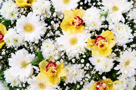 Flowers composition. Floral texture made of roses, orchids flowers, Flat lay, top view