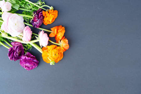 Flowers composition. Floral composition made of fresh ranunculus flowers on black background. Flat lay, top view, web banner Banque d'images