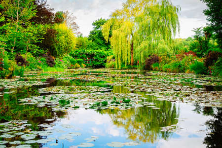 Pond with water lilies flowers in Giverny at summer day with sunshine Banque d'images