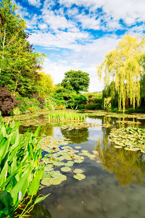 view of pond with lilies in Giverny at summer day with sunshine Banque d'images