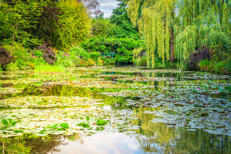 Pond with water lilies in Giverny at summer day with sunshine