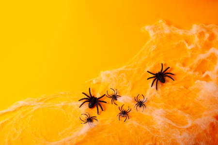 Halloween flat lay scene on bright orange background with spiders