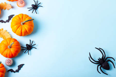 Orange halloween pumpkins and spiders border on blue background flat lay scene with copy space