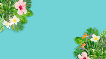 Tropical green leaves and flowers frame on aqua blue banner background with copy space