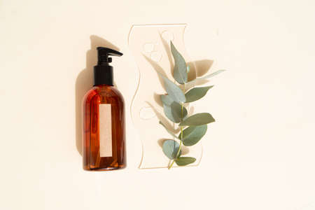 Natural cosmetics bottle with eucaliptus on earth tones brown background Banque d'images