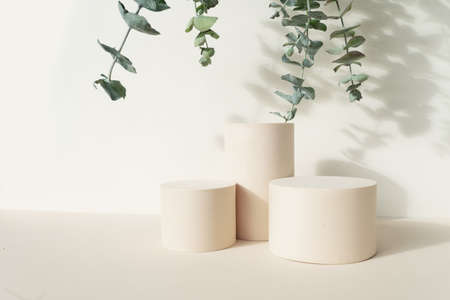 Minimal modern product display on beige background with podium and fresh eucaliptus leaves