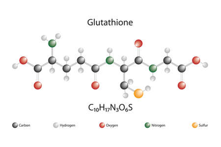 Molecular structure and chemical formula of glutathione
