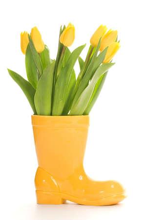 Fresh tulips in yellow vase isolated on white background Stock Photo - 2488107