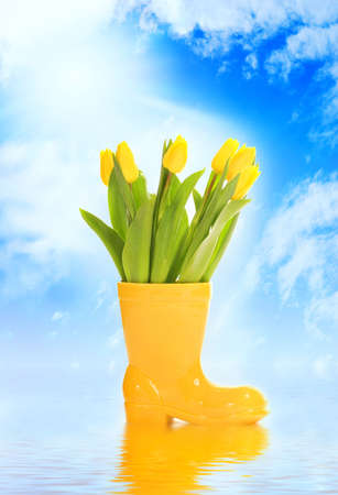 Spring is coming! Stock Photo - 2532379