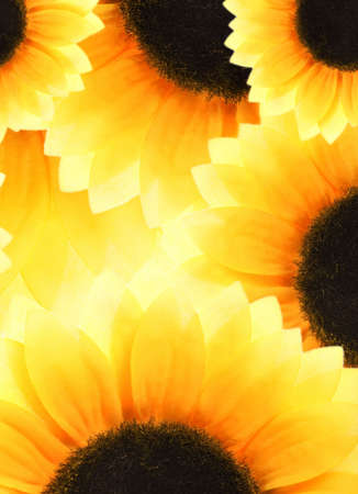 Abstract sunflower background photo