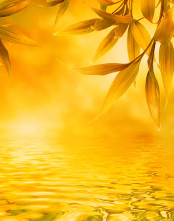 Golden leaves reflected in water