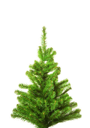 Christmas tree without decoration. Isolated on white background Stock Photo
