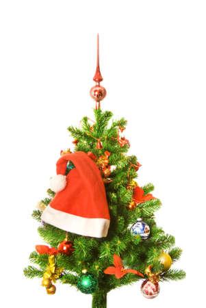 christmastree: Decorated Christmas-tree
