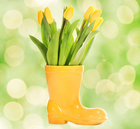 resh tulips in yellow vase Stock Photo - 3928312