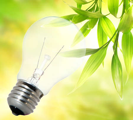 Environment friendly bulb Stock Photo - 4003417