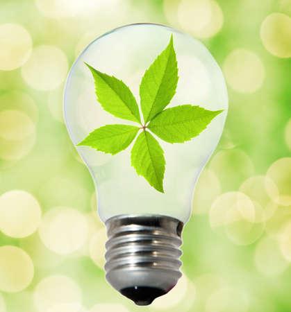 Environment friendly bulb Stock Photo - 4003419