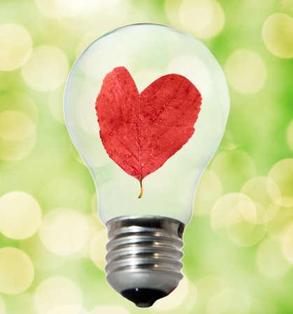 Environment friendly bulb Stock Photo - 4003418