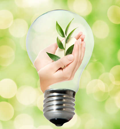 Environment friendly bulb Stock Photo - 4003412