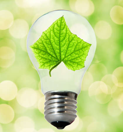 Environment friendly bulb Stock Photo - 4003420