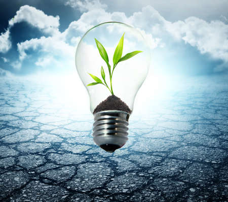 Milieuvriendelijke lamp Stockfoto