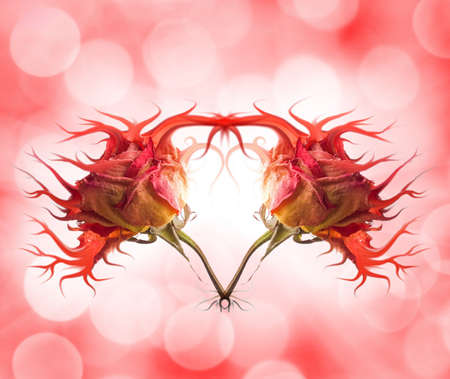 Stylish rose heart over abstract blurred background photo