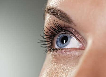 Blaues Auge auf grauem Hintergrund (Shallow DOF) Standard-Bild - 5493787