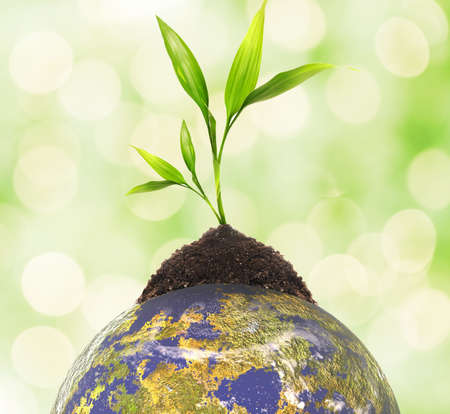 Ecology concept Stock Photo - 6745339