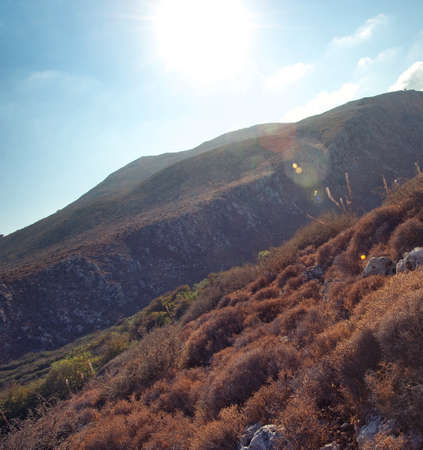 Sunshine in the mountains photo