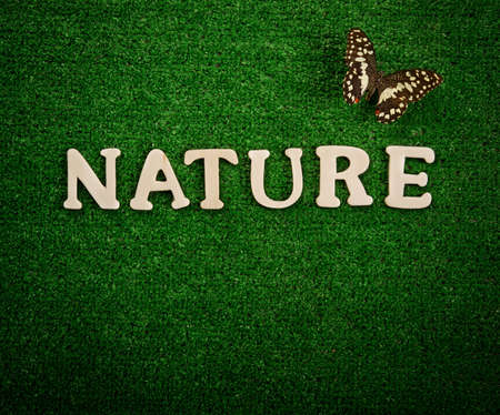 The word nature written on green background Stock Photo - 9252651