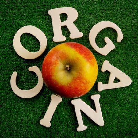 Thw word organic written on green background Stock Photo - 9252591
