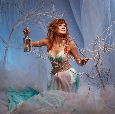 fey: Elf in magical winter forest with lantern. Stock Photo