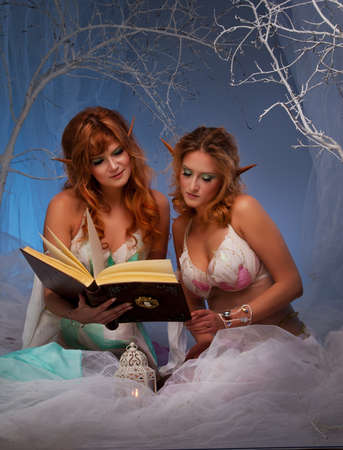 Elves in magical  forest with a book. photo