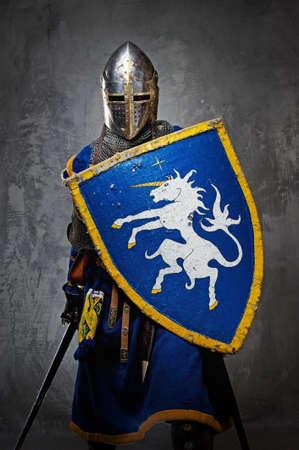 espadas medievales: Caballero medieval sobre fondo gris.