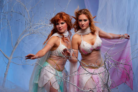 Elves in magical winter forest. photo