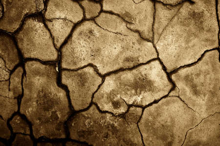 Dry cracked soil texture. photo