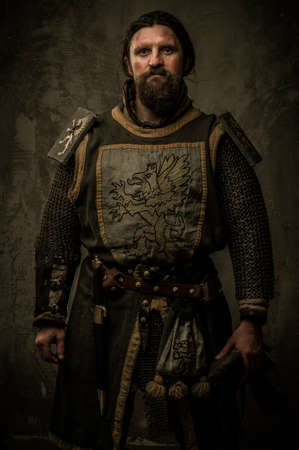 Medieval knight without weapon photo