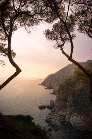 Sunrise over rocky sea shore Stock Photo - 16053490