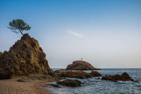 Beautiful mediterranean sea shore Stock Photo - 16054418