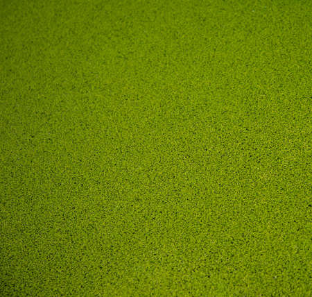grass area: Close-up view of artificial green grass background