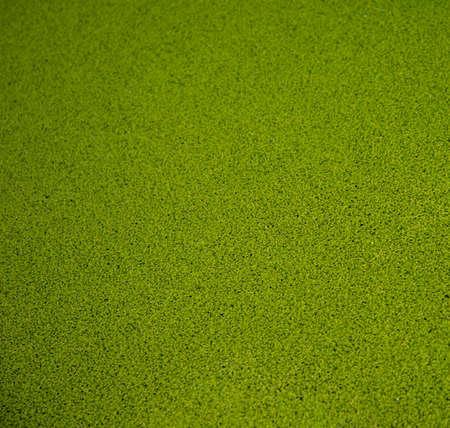 pasto sintetico: Primer plano de fondo verde hierba artificial Foto de archivo
