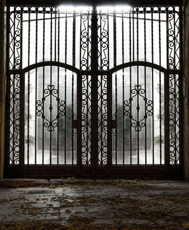 iron bars: Closed old metal gate