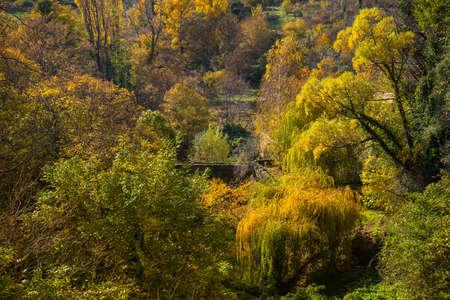 Old bridge  in autumn landscape Stock Photo - 16611652