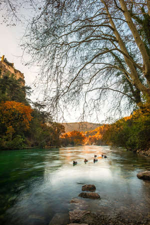 fontaine: Beautiful river in Fontaine-de-Vaucluse, France