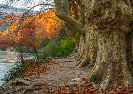 pathways: Walkway near river in Fontaine-de-Vaucluse, France