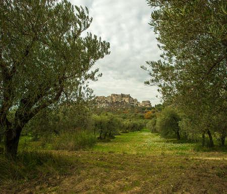 mediterranean forest: Old castle view