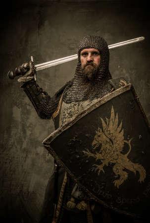 medieval swords: Caballero medieval con la espada y el escudo contra la pared de piedra