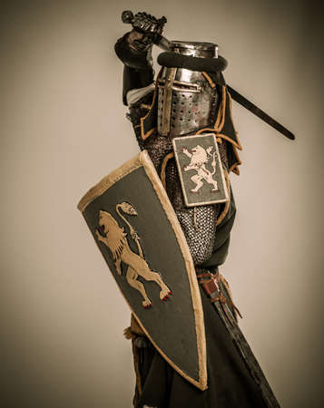 combative: Medieval knight with sword and shield