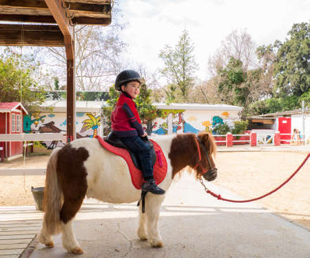 Kleine jongen in beschermende helm rijden op pony