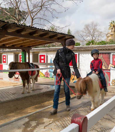 zoo youth: Little boy in protective helmet riding on pony