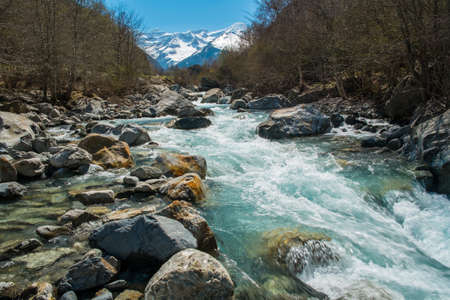 Fast river in mountain forest  photo
